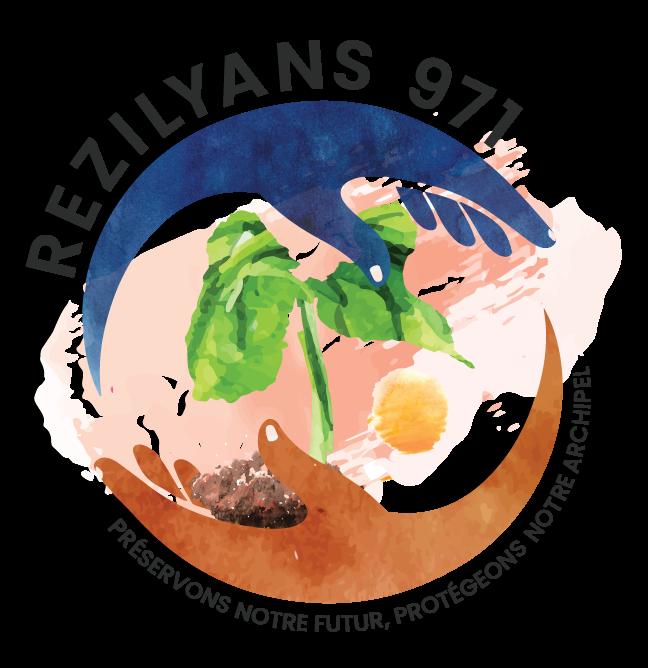 Rézilyans 971
